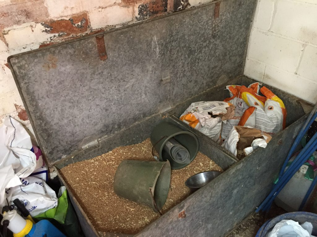 chicken feed bin