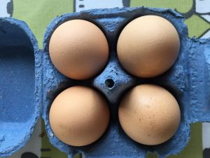 Large light brown cream chicken eggs