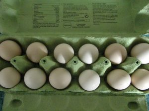 black silkie chicken eggs
