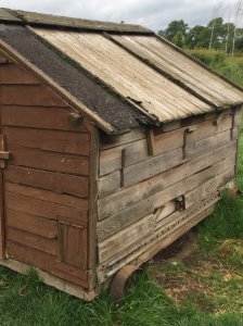 chicken coop for 12 chickens