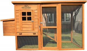 pets imperial chicken coop for 4 chickens