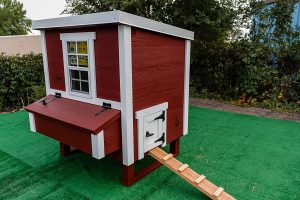 OverEz medium chicken coop
